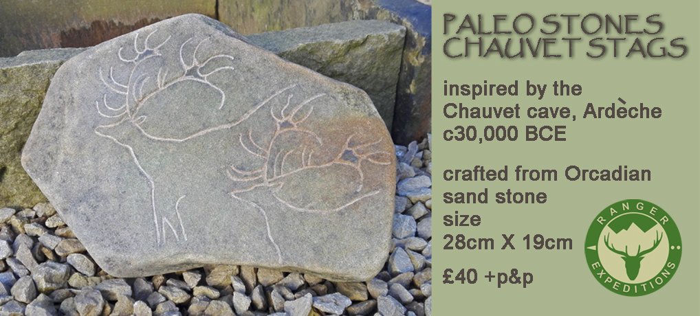 Paleo Stone #01 - Chauvet Stags - ONE AVAILABLE